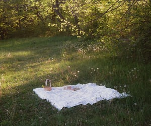 picnic, green, and nature image