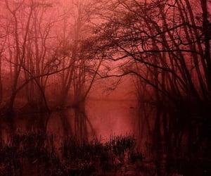 dark, goth, and lake image