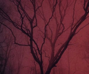 forest, red tree, and dark image