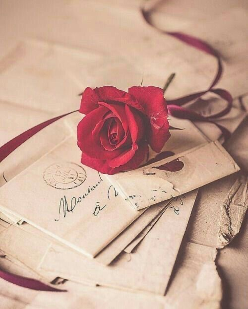 flower, Letter, and roses image