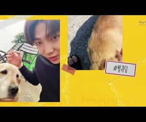 video, jimin, and rm image