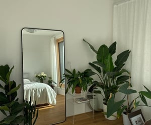 interior, mirror, and plants image