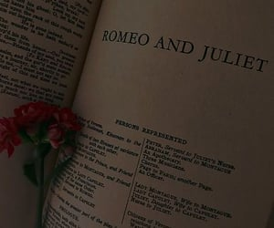 romeo and juliet, rose, and book image