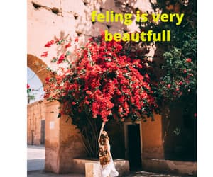 beautfull, dating, and summer image