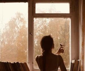 bird, book, and girl image