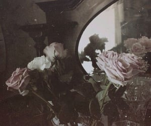 aesthetic, mirror, and roses image
