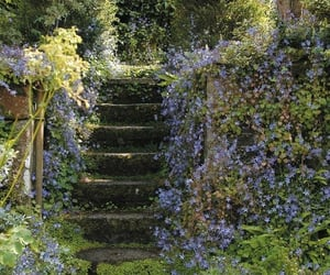 flowers, aesthetic, and steps image