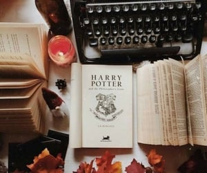 autumn, reed, and book image