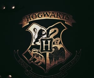 harry potter, magic, and Houses image