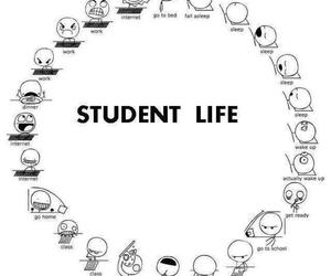 funny, student, and life image