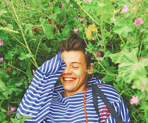 hs, harrystyles, and styles image