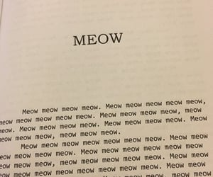 cat, book, and meow image