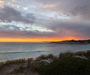 beach, ocean, and orange image