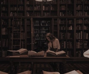 library, studying, and dark academia image