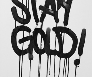 black, stay gold, and text image