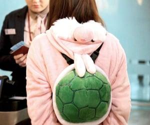 rabbit, blackpink, and jisoo rabbit turtle kim image