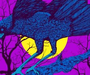 gif, raven, and bird gif image
