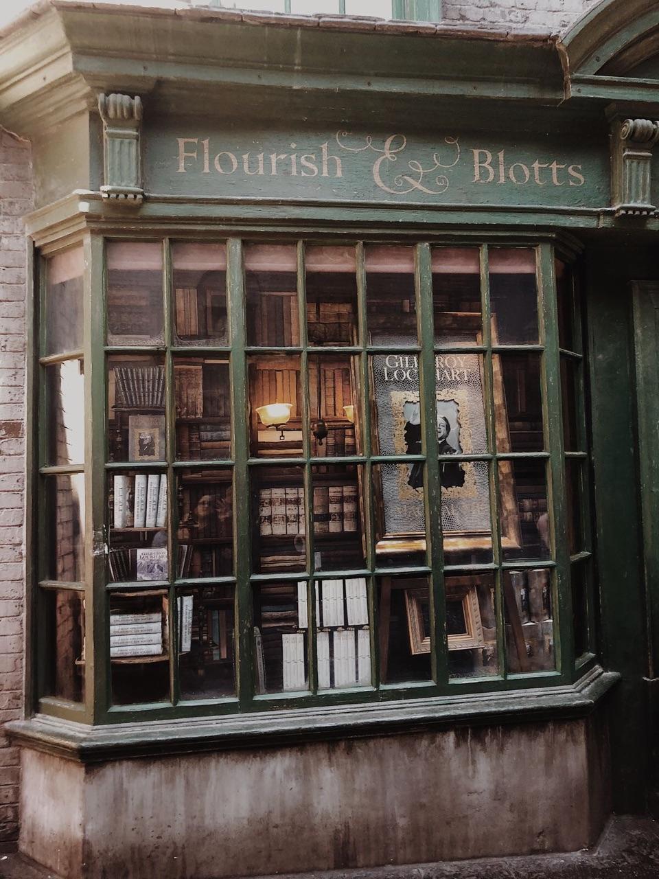aesthetics, bella swan, and hermione granger image