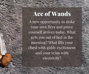 ace of wands, energy, and enthusiasm image