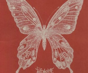 butterfly, red, and aesthetic image