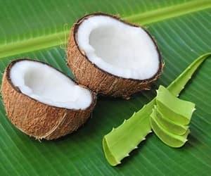 coconut milk shampoo, shikakai, and baking soda detox image