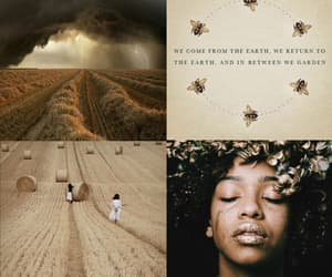 bee, earth, and field image