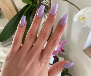 color, long, and manicure image