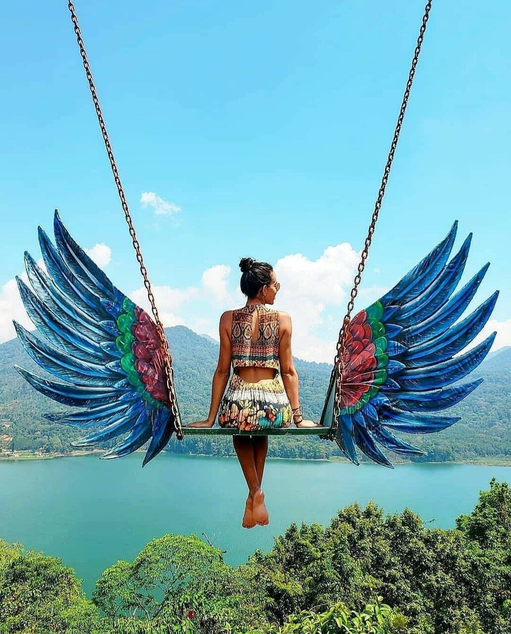 wings and swing image