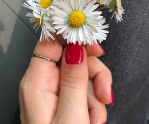 beautiful, hands, and red image
