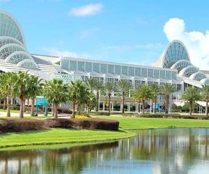 disney, florida, and vacation image