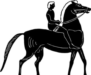 black, horse, and man image