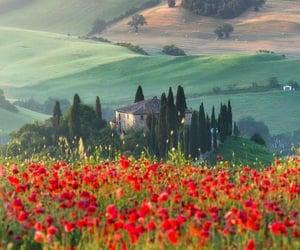 Pienza, Italy   @eve365