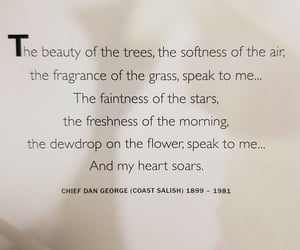 beauty, flowers, and meditation image