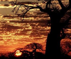 africa, sunset, and zimbabwe image