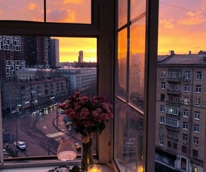 flowers, sunset, and city image