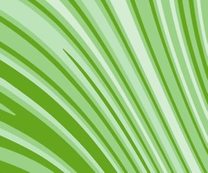abstract, graphics, and green image