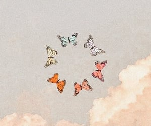 butterfly, sky, and wallpaper image
