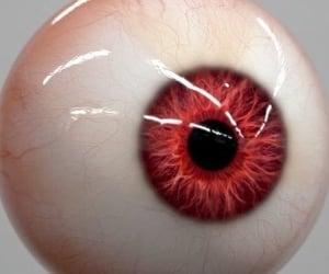 archive, eye, and eyeball image