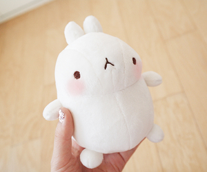 kawaii, cute, and molang image