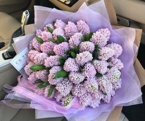 flowers, purple, and fashion image