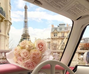 fancy, flower, and vacation image