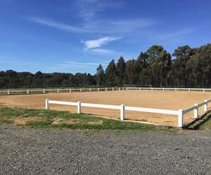arena, rail pvc arena, and horse arena image