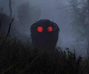 videogame, appalachia, and mothman image
