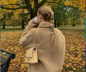 autumn, braid, and clothes image