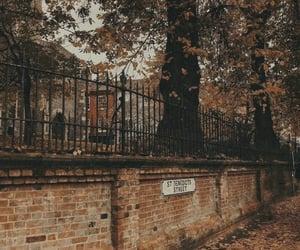 autumn, brick wall, and campus image