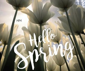 flowers, hello spring, and march image