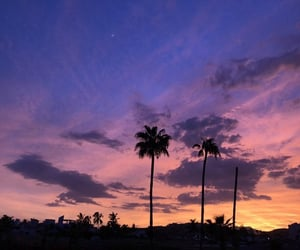 enjoy, holidays, and Miami image