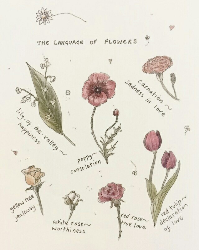 article, lavender, and tulipe image