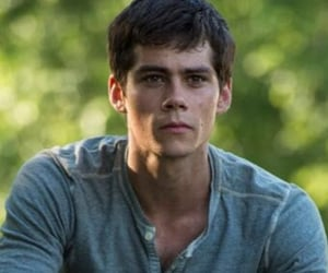 boys, thomas, and maze runner image