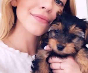dog, fashion, and sydney sweeney image